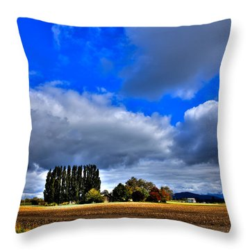 Mount Vernon In The Fall Throw Pillow