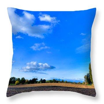 Mount Vernon Landscape Throw Pillow