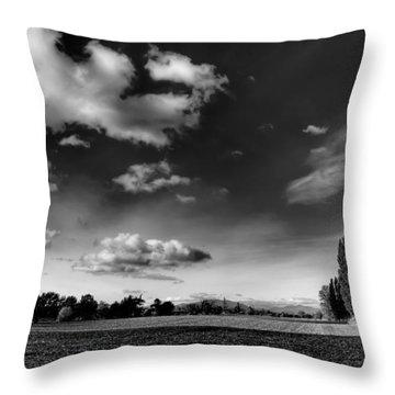 Mount Vernon Washington Throw Pillow