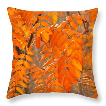Throw Pillow featuring the photograph Mountain Ash Leaves In Autumn by Jim Sauchyn