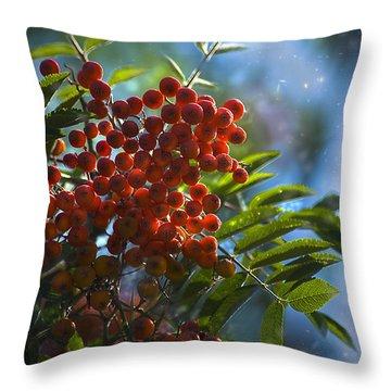 Throw Pillow featuring the photograph Mountain Ash by Yulia Kazansky