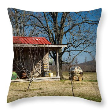 Mountain Cabin In Tennessee 2 Throw Pillow by Douglas Barnett