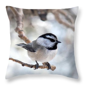 Mountain Chickadee On Branch Throw Pillow