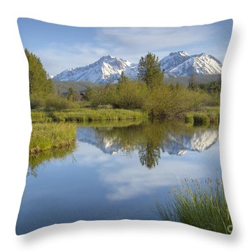 Mountain Daydream Throw Pillow by Idaho Scenic Images Linda Lantzy