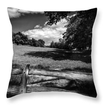 Mountain Field Throw Pillow by Bob Orsillo