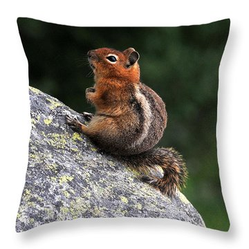 Mountain Friends Throw Pillow by Rebecca Parker