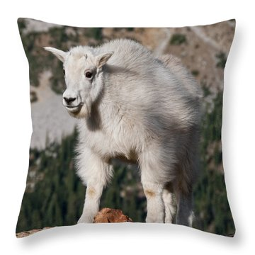 Mountain Goat Kid Standing On A Boulder Throw Pillow