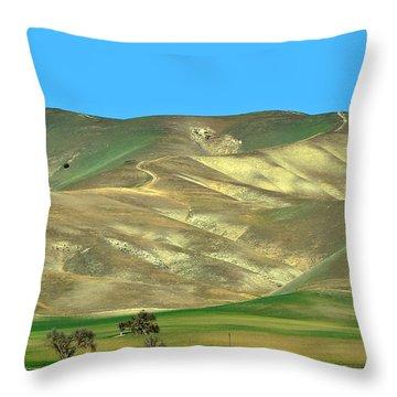 Mountain Hues Throw Pillow by Susan Wiedmann