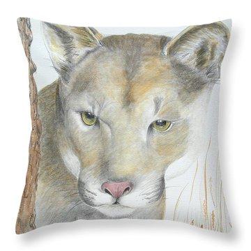 Mountain Hunter Throw Pillow