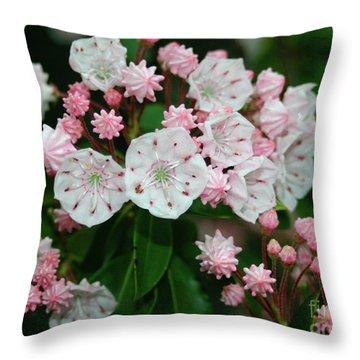 Mountain Laurel Throw Pillow by Annlynn Ward