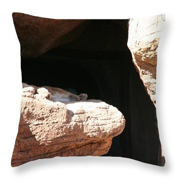 Throw Pillow featuring the photograph Mountain Lion by David S Reynolds