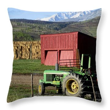 Mountain Living Throw Pillow by Fiona Kennard