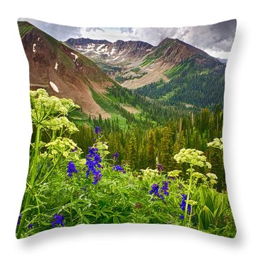 Mountain Majesty Throw Pillow by Priscilla Burgers