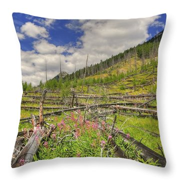 Throw Pillow featuring the photograph Mountain Meadow In Banff by Jim Sauchyn