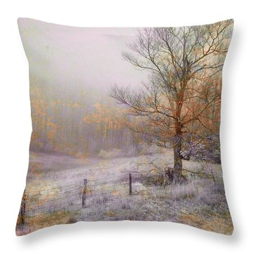 Mountain Mist II Throw Pillow by William Beuther