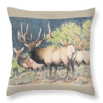 Mountain Monarch Throw Pillow