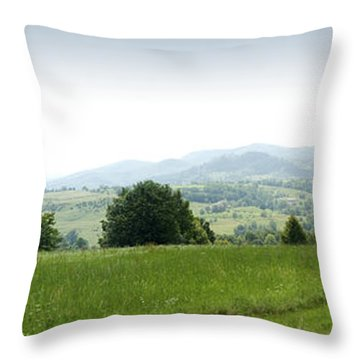 Mountain Panorama Throw Pillow