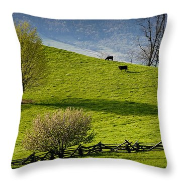 Mountain Pasture With Two Cows Throw Pillow by John Pagliuca