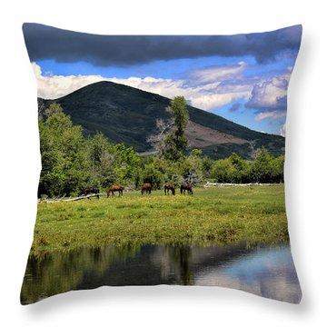 Mountain Pasture Throw Pillow