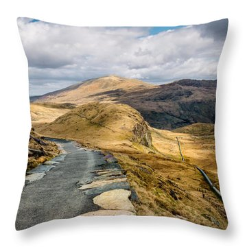 Mountain Path Throw Pillow by Adrian Evans
