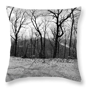 Mountain Road Throw Pillow by Susan Leggett
