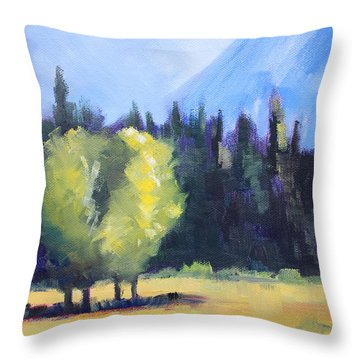 Mountain Shadows Landscape Painting Throw Pillow