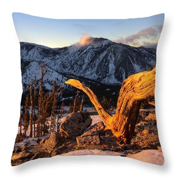Mountain Snake Throw Pillow