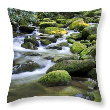 Mountain Stream 1 Throw Pillow