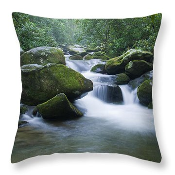 Mountain Stream 2 Throw Pillow