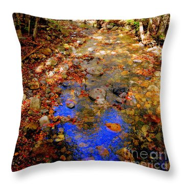 Mountain Stream Covered With Fall Leaves Throw Pillow