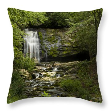 Mountain Stream Falls Throw Pillow