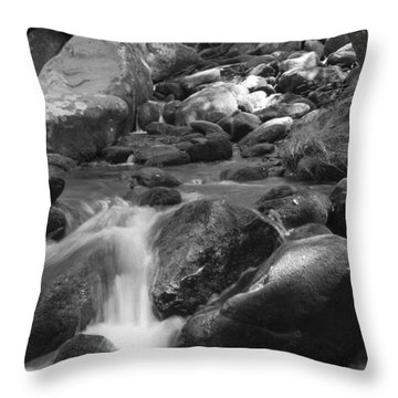 Mountain Stream Monochrome Throw Pillow
