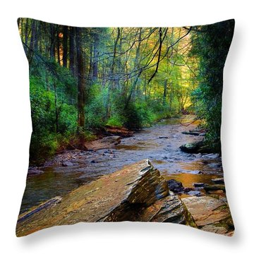 Throw Pillow featuring the photograph Mountain Stream N.c. by Bob Pardue