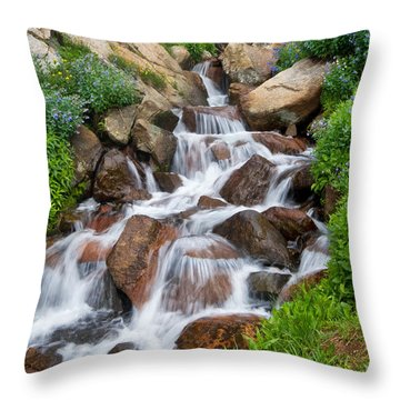 Throw Pillow featuring the photograph Mountain Stream by Ronda Kimbrow