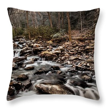 Throw Pillow featuring the photograph Icy Mountain Stream by Debbie Green
