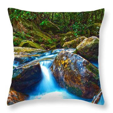 Throw Pillow featuring the photograph Mountain Streams by Alex Grichenko