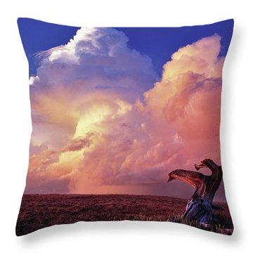 Mountain Thunder Shower Throw Pillow