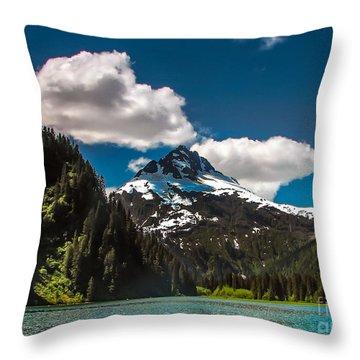 Mountain View Throw Pillow by Robert Bales