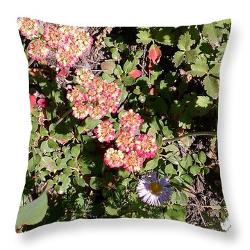 Throw Pillow featuring the photograph Mountain Wildflowers by Fortunate Findings Shirley Dickerson