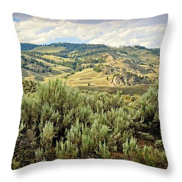 Mountains North Of The Lamar Throw Pillow by Marty Koch