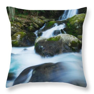 Mouse Creek Falls In Colour Throw Pillow
