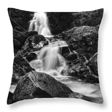 Mouse Creek Falls Throw Pillow