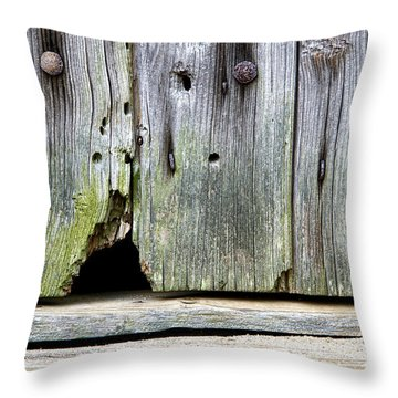 Mouse Hole Throw Pillow by Olivier Le Queinec