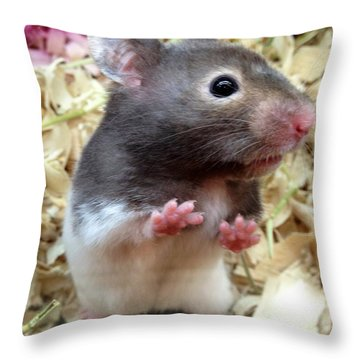 Mouse In The House Throw Pillow by Carla Carson