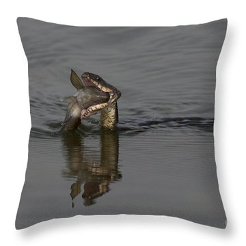 Mouthful Throw Pillow by Eunice Gibb
