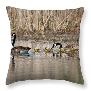 Moving Along Throw Pillow by Dale Kincaid
