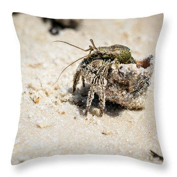 Moving Day Throw Pillow by Sennie Pierson
