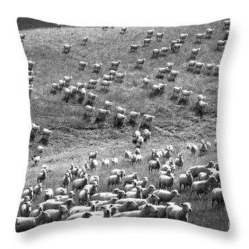 Throw Pillow featuring the photograph Moving Hillside by Nareeta Martin