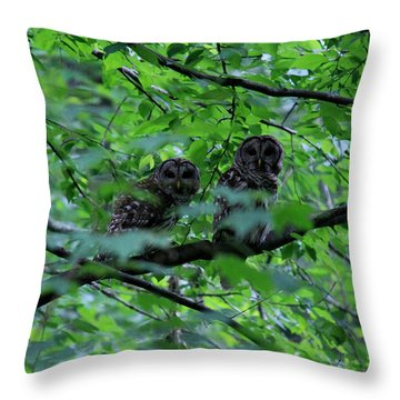 Mr And Mrs Owl Throw Pillow