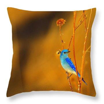 Throw Pillow featuring the photograph Mr. Blue by Kadek Susanto